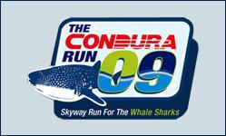 Skyway Run for the Whale Sharks