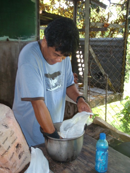 Preparing the rice