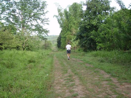 Seven kilometers into our run