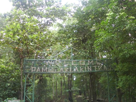 Entrance to Pamulaklakin Trail