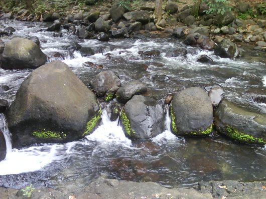 Refreshing sights
